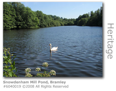 Snowdenham Mill Pond, Bramley