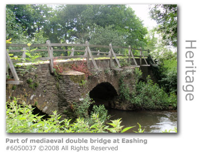 Eashing mediaeval bridge