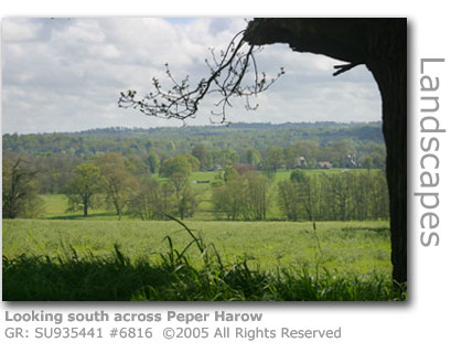 Peper Harow Estate