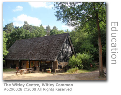 The Witley Centre, Witley Common